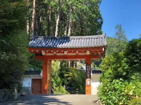 2019年8月 京都 宇治 三室戸寺 ときめきな日々.JPG
