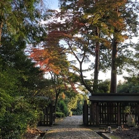 2020年10月 京都山科 天智天皇山科陵 紅葉 ときめきな日々 .JPG