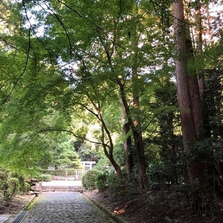 2020年10月 京都山科 天智天皇陵 ときめきな日々.jpg