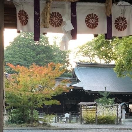 2020年10月 離宮の水 水無瀬神宮 紅葉 ときめきな日々.jpg