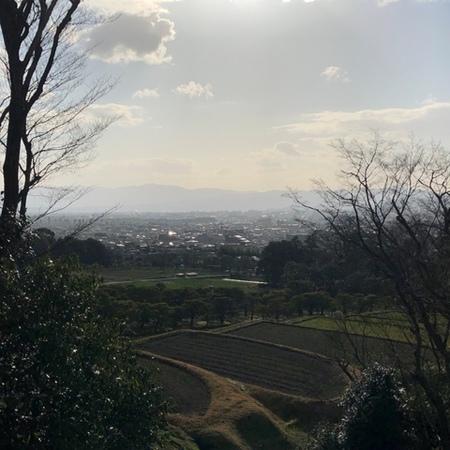 2020年2月 京都 修学院離宮 ときめきな日々 (2).JPG