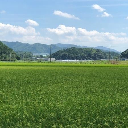 2020年8月 京都 亀岡 ときめきな日々.JPG