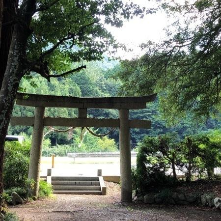 2020年8月 京都 亀岡 ときめきな日々 (2).JPG