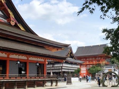2020年8月 八坂神社 ときめきな日々.JPG