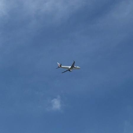 2020年8月 兵庫 伊丹空港 ときめきな日々.JPG