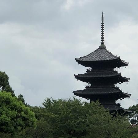 2020年9月 京都 東寺 ときめきな日々.JPG