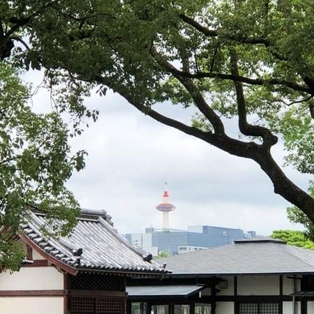 2020年9月 京都 東寺 ときめきな日々 (2).JPG