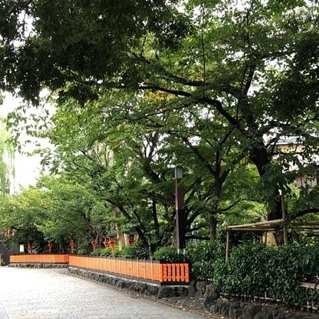 2020年9月 京都東山 ときめきな日々.JPG