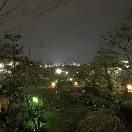 京都 八坂神社 円山公園 (6).JPG