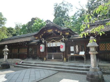 京都 平野神社 (3).JPG