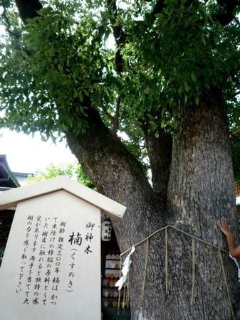 京都 晴明神社 (5).JPG