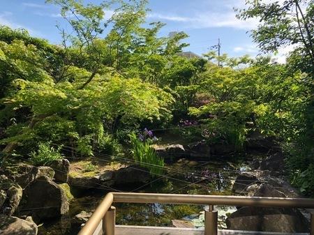 京都 長岡京 小倉山荘 (2).jpg