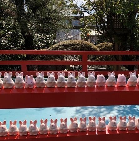 京都東山 岡崎神社 うさぎみくじ.jpg
