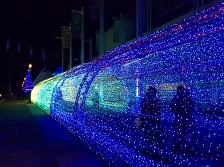 大阪 海遊館 イルミネーション.JPG