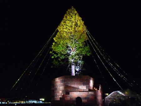 神戸 メリケンパーク クリスマスツリー (2).JPG