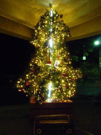 神戸 六甲山 六甲ケーブル山上駅 クリスマスツリー.JPG