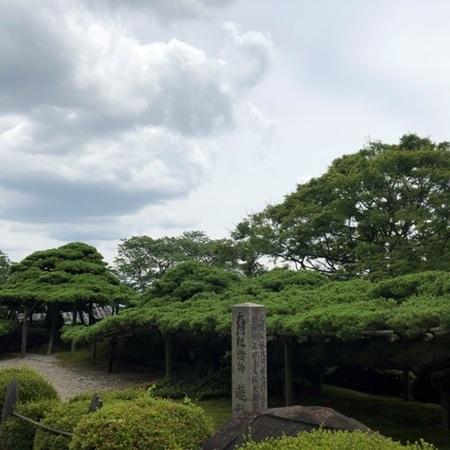 西国二十番札所 京都 西山 善峯寺 あじさい (8).JPG