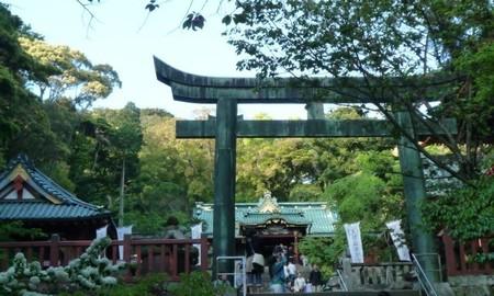 静岡 久能山東照宮 (9).JPG